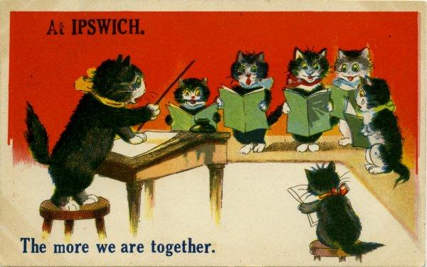 Ipswich cats